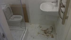 Уборка квартиры после ремонта от Clean House, душевая до уборки