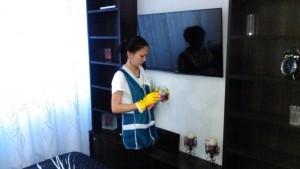 Домработница, удаление пыли с предметов интерьера от компании CleanHouse