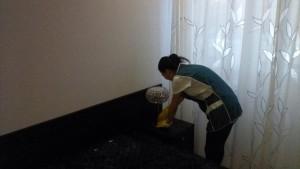 Домработница, удаление пыли с мебели от компании CleanHouse